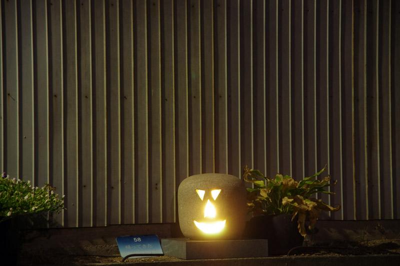 ハロウィンみたいでかわいらしい。